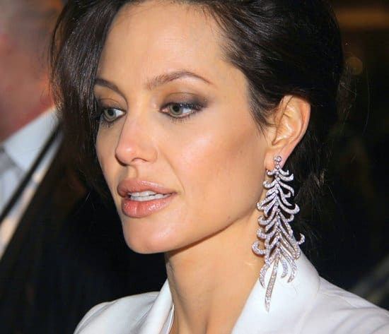 Angelina Jolie at the Germany premiere of The Curious Case of Benjamin Button at CineStar Soney Centre in Berlin on January 19, 2009