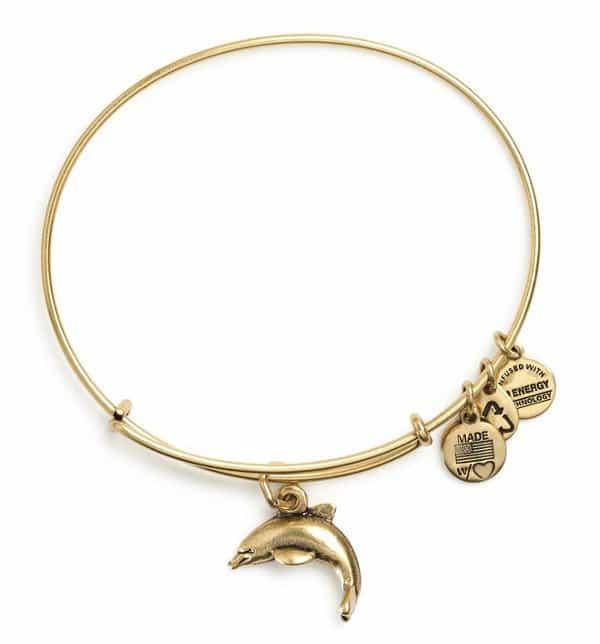 Dolphin Charm Bangle